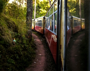 Himalayan Queen, a toy train, snakes through a forest stretch while travelling from Kalka to Shimla. The Kalka-Shimla railway line was constructed in 1906 with more than 806 bridges and 103 tunnels, In 2008, it became a UNESCO World Heritage Site.